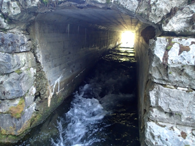 Tunnel Under The Road