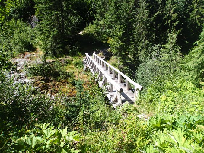 North Fork Of The Puyallup Bridge