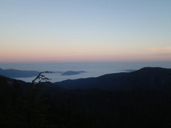 Fog In Puget Sound