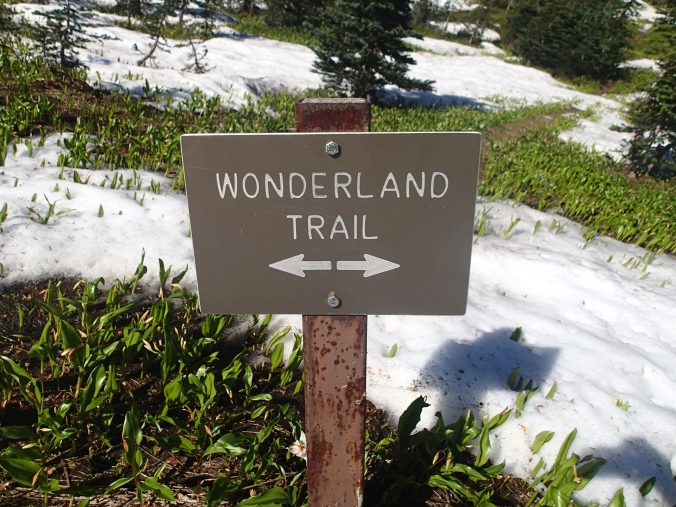 Wonderland Trail Sign