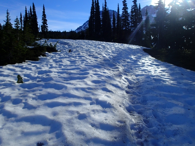 Snow Covered Trail Above St. Andrews Lake
