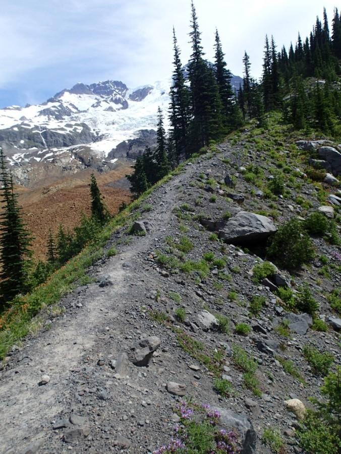 Trail Up Emerald Ridge