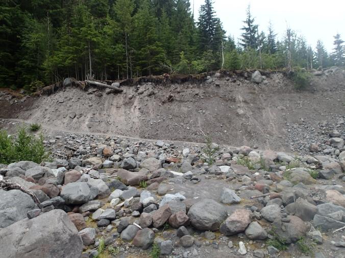 Trail Climbing Out Of Kautz Creek